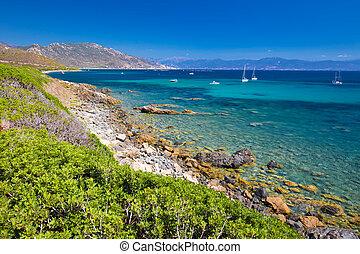 κορσική , tourquise, βραχώδης , καθαρά , κορσική , γαλλία , ζάλισμα , νερό , europe., παραλία , ακτογραμμή