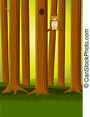 κουκουβάγια , δάσοs