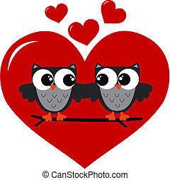 κουκουβάγιες , αγάπη , δυο