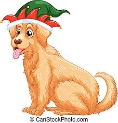 κουραστικός , χαριτωμένος , καπέλο , σκύλοs , αστειολόγος