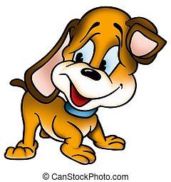 κουτάβι , σκύλοs