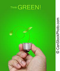 κρίνω , πράσινο , γενική ιδέα
