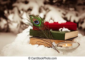 κρασί , αγία γραφή , γριά , χιόνι , φόντο
