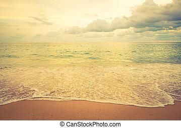 κρασί , παραλία