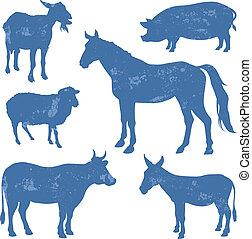 κτηνοτροφία