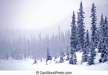 λίμνη , χιονόπτωση , δοξάρι