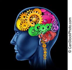 λειτουργία , εγκέφαλοs