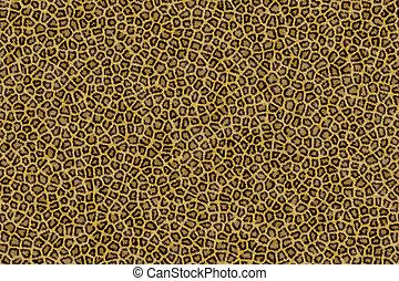 λεοπάρδαλη , γούνα