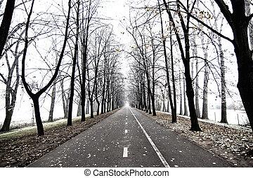 λεωφόροs , δέντρα