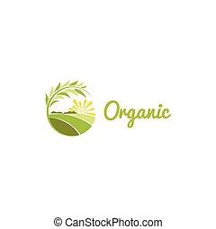 λιβάδι , χρώμα , αφαιρώ , ηλιόλουστος , logotype, απομονωμένος , σχήμα , μικροβιοφορέας , πράσινο , γεωργικός , στρογγυλός , ο ενσαρκώμενος λόγος του θεού , illustration.
