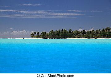 λιμνοθάλασσα , μπλε , τέλειος , φόντο , motu , polynesia., ...