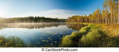 λιμνούλα , γαλήνιος , δάσοs , πρωί