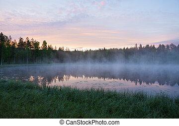λιμνούλα , πρωί , δάσοs , ομιχλώδης
