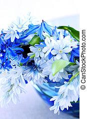 λουλούδια , άνοιξη , πρώτα