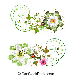 λουλούδια , τακτοποίηση
