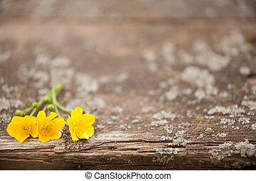 λουλούδια , φόντο , ξύλινος