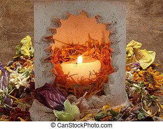λουλούδι , άρωμα , δύναμη , θεραπεία