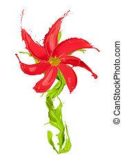 λουλούδι , έγχρωμος , απομονωμένος , αναβλύζω , γινώμενος , φόντο , άσπρο