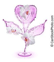 λουλούδι , απομονωμένος , νερό , γινώμενος , αναβλύζω , φόντο , άσπρο