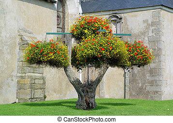 λουλούδι , δέντρο