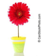 λουλούδι , μέσα , δοχείο