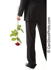 λουλούδι , τριαντάφυλλο , απομονωμένος , νέοs άντραs , κόκκινο