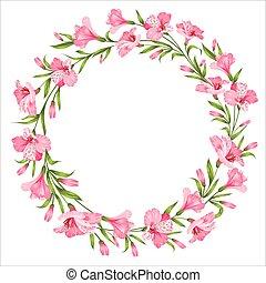 λουλούδι , τροπικός , εικόνα , πάνω , άσπρο , φόντο. , μικροβιοφορέας , απομονωμένος , wreth