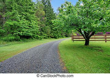 μήλο , κήπος , και , δρόμος με χαλίκια