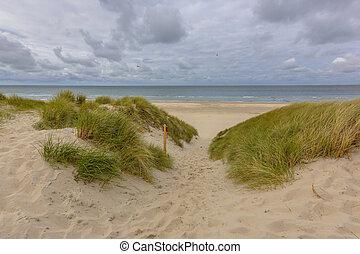 μακρινή θέα , ακρογιαλιά αμμόλοφος , θάλασσα