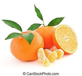 μανταρίνι , πορτοκαλέα