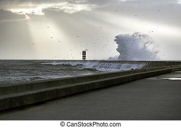 μαντεύω , θάλασσα , καταιγίδα