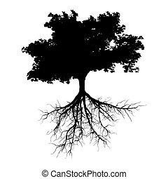 μαύρο , δέντρο , με , ρίζα