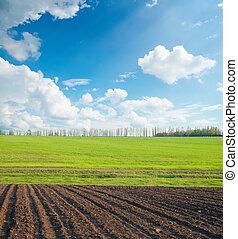 μαύρο και , αγίνωτος αγρός , κάτω από , συννεφιά