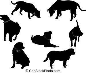 μαύρο , silhouettes.., σκυλί ράτσας λαμπραντόρ