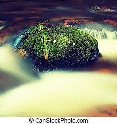μεγάλος , βότσαλο , σκεπαστός , από , φρέσκος , πράσινο , βρύο , μέσα , αφρώδης , νερό , από , βουνό , river., ελαφρείς , θολός , κρύο νερό , με , αντανάκλαση , άσπρο , δίνη , μέσα , rapids.