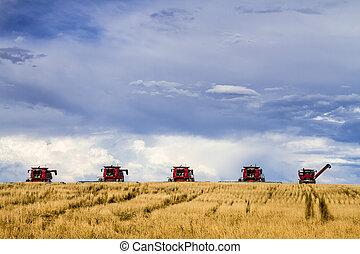 μεγάλος , κόκκινο , θεριζοαλωνιστική μηχανή , γεωργία , εξοπλισμός