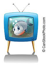 μεγάλος , τηλεόραση , fish