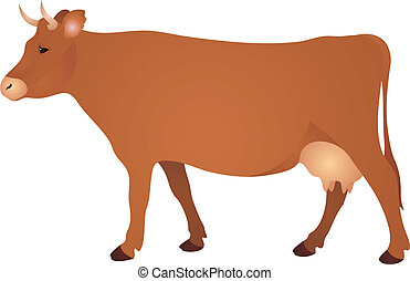 μικροβιοφορέας , αγελάδα