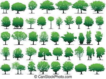 μικροβιοφορέας , δέντρα