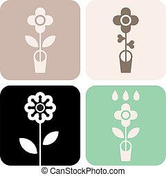 μικροβιοφορέας , δοχείο , λουλούδι , - , εικόνα