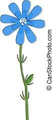 μικροβιοφορέας , ζωγραφική , ραδίκι , χρώμα , ή , λουλούδι , εικόνα