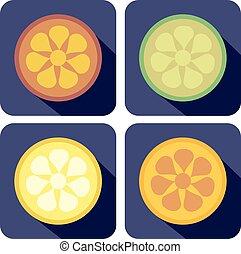 μικροβιοφορέας , θέτω , απεικόνιση