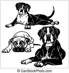 μικροβιοφορέας , θέτω , - , σκύλοs , εικόνα , απομονωμένος , είδος σκύλου , φόντο , άσπρο