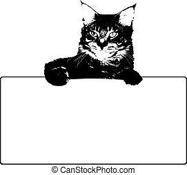 μικροβιοφορέας , μαύρο , frame., γάτα