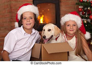 μικρόκοσμος , κατοικίδιο ζώο , δικό τουs , ώρα , καινούργιος , xριστούγεννα