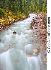 μικρός , yoho, ποτάμι , καταρράκτης , καναδάs