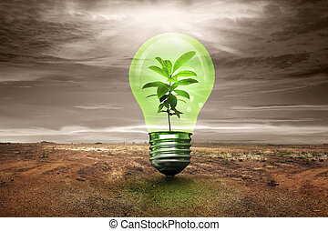 μικρό , εργοστάσιο , εσωτερικός , λαμπτήρας φωτισμού , μέσα , ραγισμένος , γη