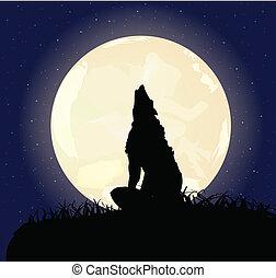 μοναχικός , λύκος