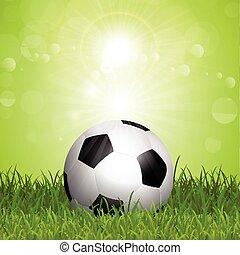 μπάλλα ποδοσφαίρου , μέσα , γρασίδι