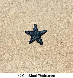 μπλε , άμμος αχανής έκταση , αστερίας